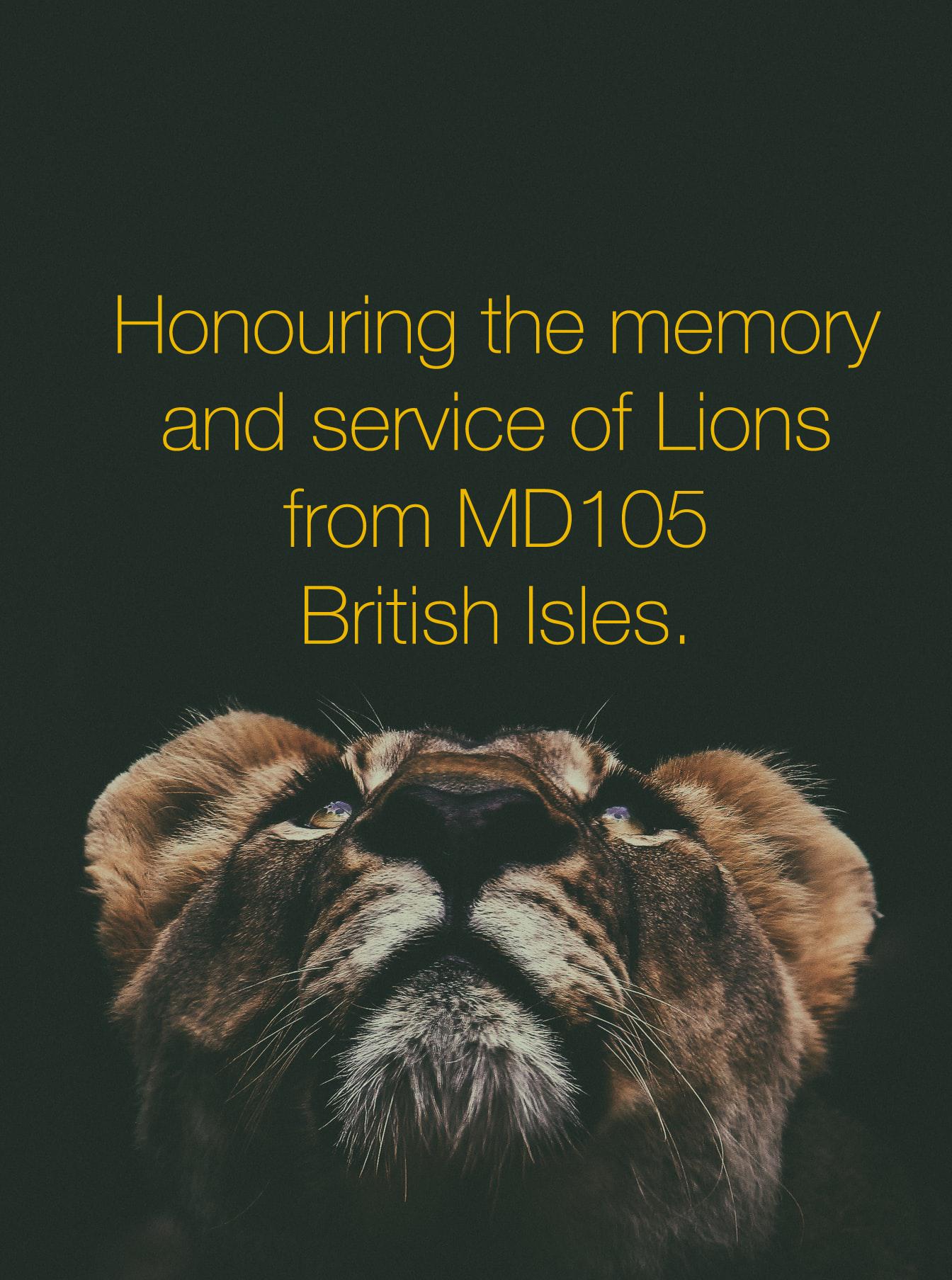 lion-in-memoriam